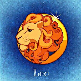 lion-759374__340